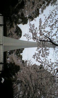 花見へGo(日常)